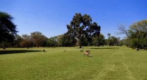 Elephant Hills Golf Club & Golf Course, Zimbabwe Tour Packages