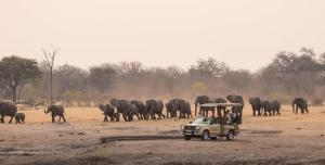 ( Zimbabwe ) - Zambezi Nature Sanctuary Tour Packages