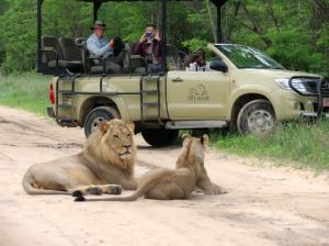 Zambezi Nature Sanctuary - Zimbabwe Side Tour Packages